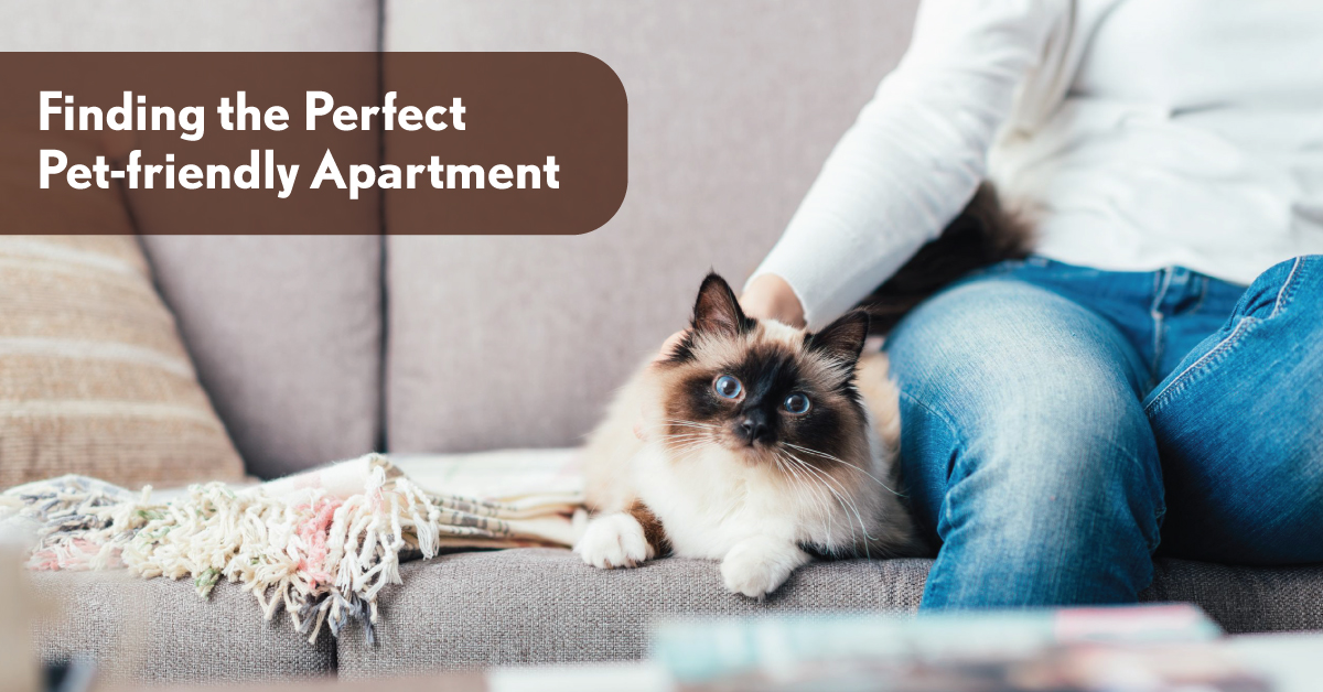 Pet-friendly Apartment Gachibowli